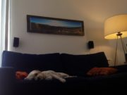 Panorama Picture Frames: My Personal iPhone and Samsung Camera Framed Artwork